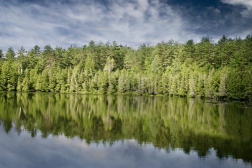 Arbres Lac Ubios Earth Day Featured